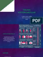 Trauma Vertebromedular