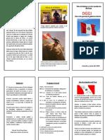TRIPTICO DIA DE LA BANDERA.docx