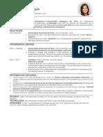 Modelo de CV de Impacto