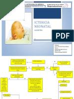 Algoritmo Ictericia Neonatal