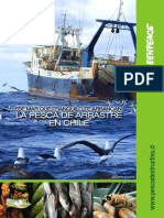 Documento Pesca de Arrastre