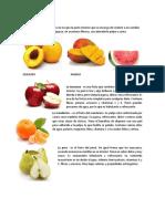 Frutas Carnosos y Secos