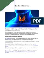 Fluoride Schaden Der Schilddrüse