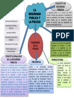 MAPA MENTAL DE SEGURIDAD PUBLICA.pptx