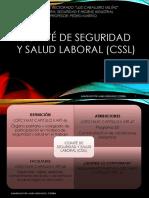 Tema Extra_comite Seguridad y Salud Laboral_laura Oseche_exp9720384