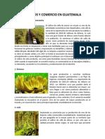 Cultivos y Comercio en Guatemala