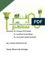 Práctica Individual Ing. Cristina
