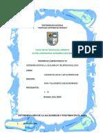 Inf04_alcalinifahierro-y-sulfato.docx
