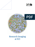 Data Storage for Research Imaging - A Case Study