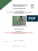 Contenido proyecto BIOL PROTIS 2018_2018.doc