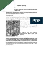 Formacion Angostura y Chemal