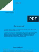 nutricion diapositiva