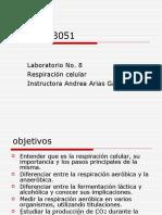 AAlab8.ppt