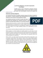 5.2 Sustancias Quimicas Peligrosas y Vias de Incorporacion Final