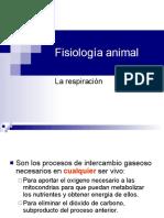 Fisiologa Animalrespiracion
