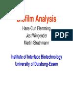 Biofilm Analysis