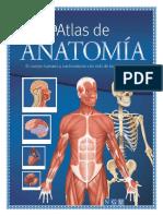 Anatomia y Ficiologia Adrian1