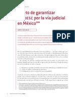 Juan Silva Meza El Reto de Garantizar Los DESC Por La via Judicial en Mexico