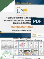 Plantilla_presentación_Evaluacin Final (Herramienta de Apoyo)