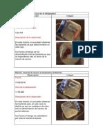 Interrogantes-del-reporte-de-cultivo-de-bacterias-1_1.docx
