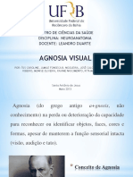 Apresentação sobre Agnosia visual