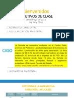 EIA 2 Regularización Ambiental Categorización Ambiental Procedimientos (2)