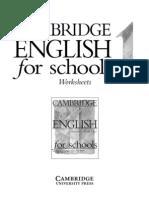 CES Worksheets 1