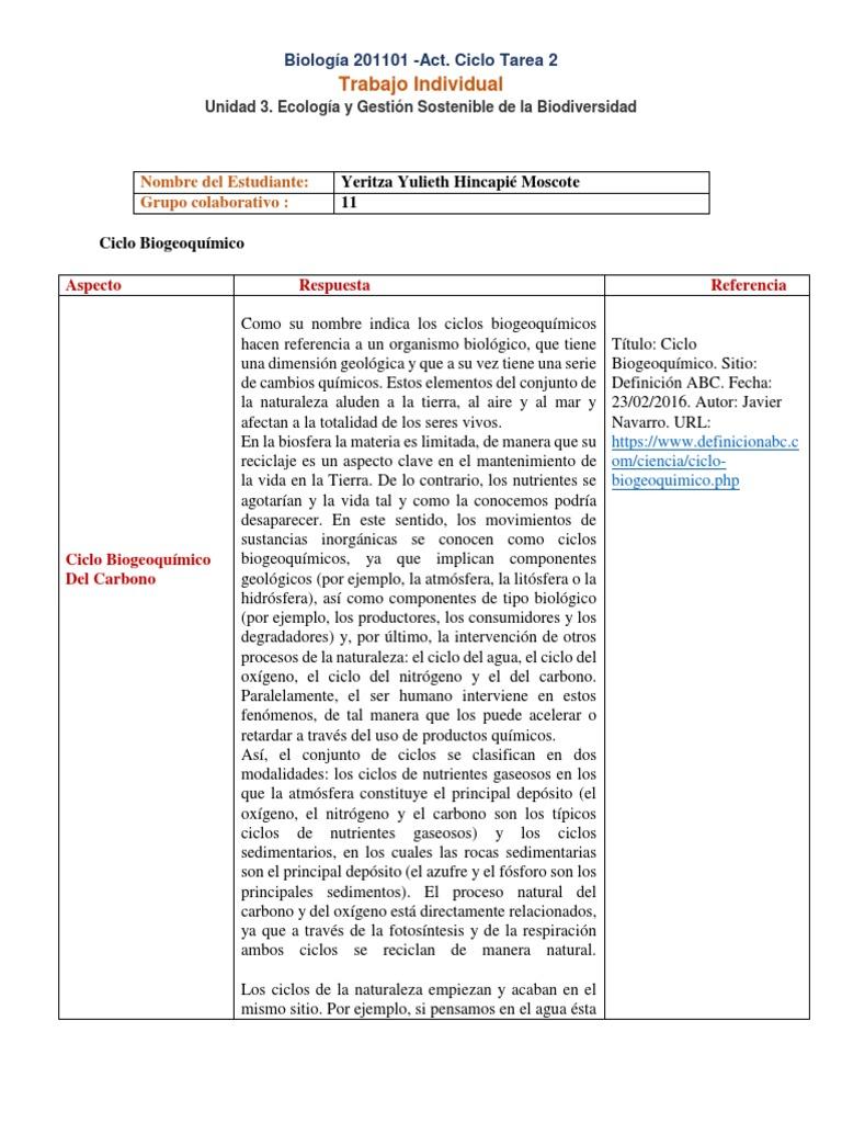 Formato Individual Ciclo de Tarea 2. Grupo 201101_11