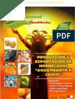 87720062-Produccion-y-Exportacion-de-Mermeladas-de-Aguaymanto-y-Sauco.docx