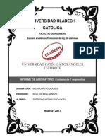 Actividad N° 06 Informe de laboratorio