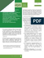 Guía Para Elaboración de Ensayo Dcdep