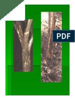 INtroducción a HyC.pdf