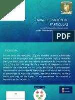 CARACTERIZACION.pptx