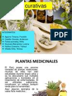PLANTAS-MEDICINALES-beneficios