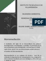 remediacion-120508181948-phpapp01