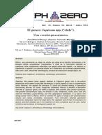 Articulo Chile Revista Aleph Zero60 2