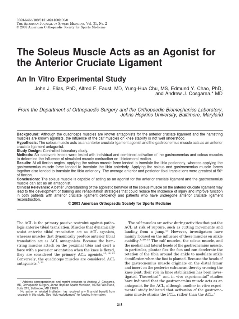The Soleus Muscle Acts as an Agonist For | Knee | Musculoskeletal System