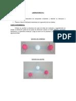 Laboratorio Nº 4 Quimica 2
