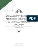 Normas Constitucionales y Principios Que Protegen El Medio Ambiente en Colombia