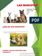 Las Mascotas Kevin Ortiz y Sebastian Torres