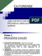19741534-Practica-Forense-Civil.pdf