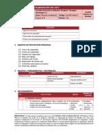 19. LB_METSOpet019 Cambio de Aceite de Reductor - 0330-FTR-0001@0028 - REVISADO (Formato MMG)