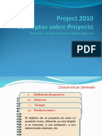 Proyecto- Project 2010