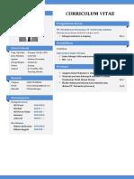 CV DOLEN SIALLAGAN.pdf