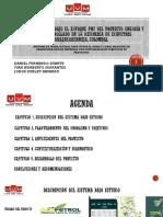 Optimizacion Proyecto Enfoque Industrial PMI