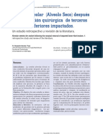 alveolo Seco .pdf