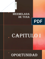 Capitulo-i.pptx