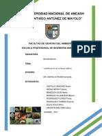 informe-2-Bioind..docx