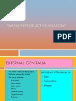 Female Reproductive Anatomy.pptx