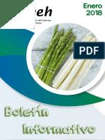 18-n 01 Boletin Informativo (1)